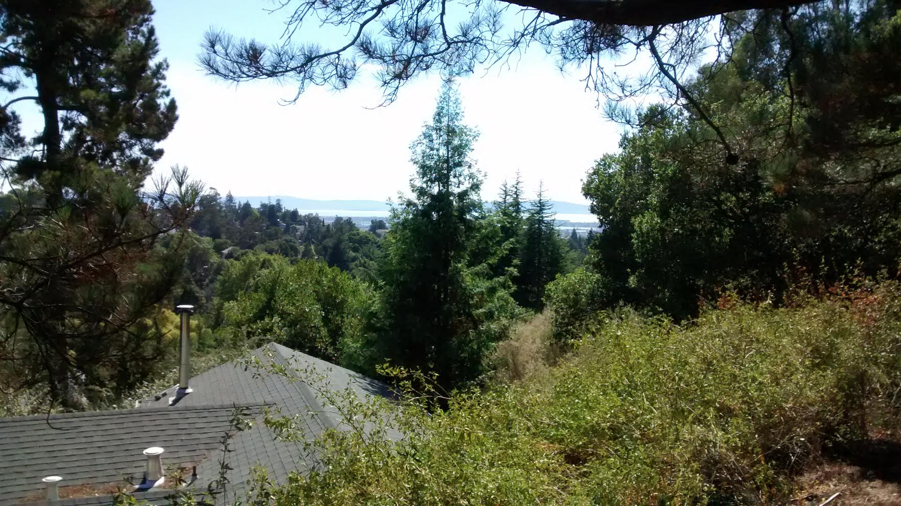 Oakland home for sale - NEW ON MARKET!